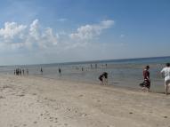 Pie jūras...